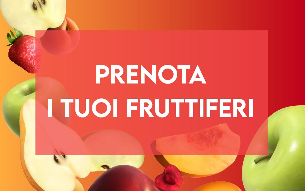Prenota i tuoi fruttiferi per settembre!